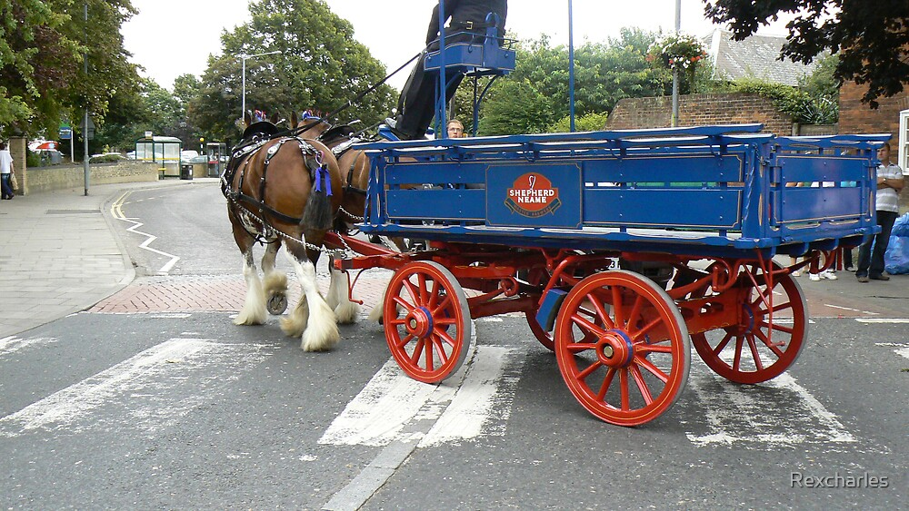 brewery dray  horses and cart by Rexcharles