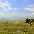 Lesotho Plain by heinrich