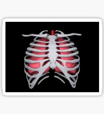 Conceptual image of human lungs and rib cage. Sticker