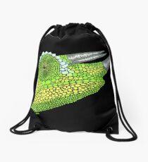 Jackson's Chameleon Drawstring Bag