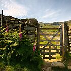 Gateway To Coniston by Stephen Smith
