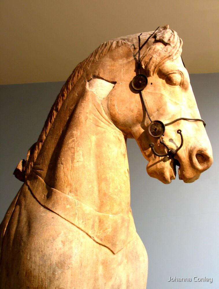 Horse  by Johanna Conley