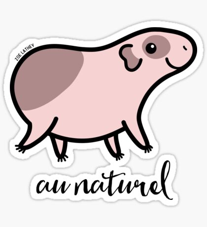 Au Naturel Guinea Pig - cute baldwin Sticker