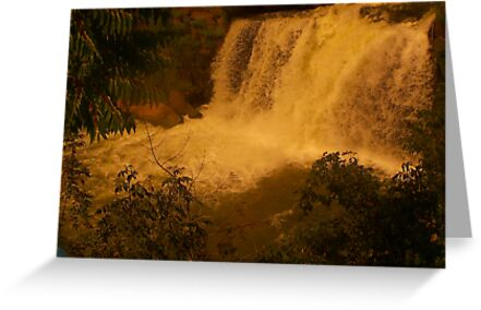 Medina Falls,  Medina, NY Starr1949 redbubble community photo photography art amber sun water falls waterfalls  by Starr1949