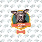 Tater Tot by Sophie Gamand