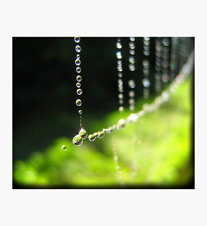 September Rain Photographic Print