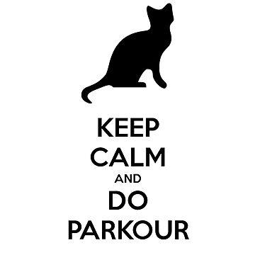 Parkour by levienb