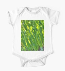 Morning Grass 3 Kids Clothes