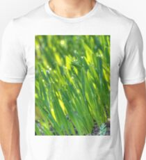 Morning Grass 3 T-Shirt