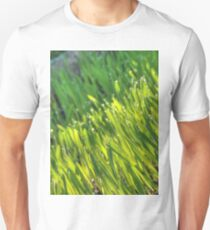 Morning Grass 6 T-Shirt