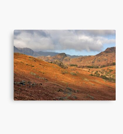 Langdale Fells  Canvas Print