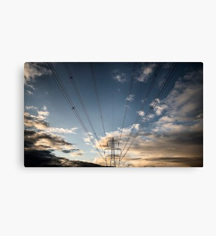 One of many Canvas Print
