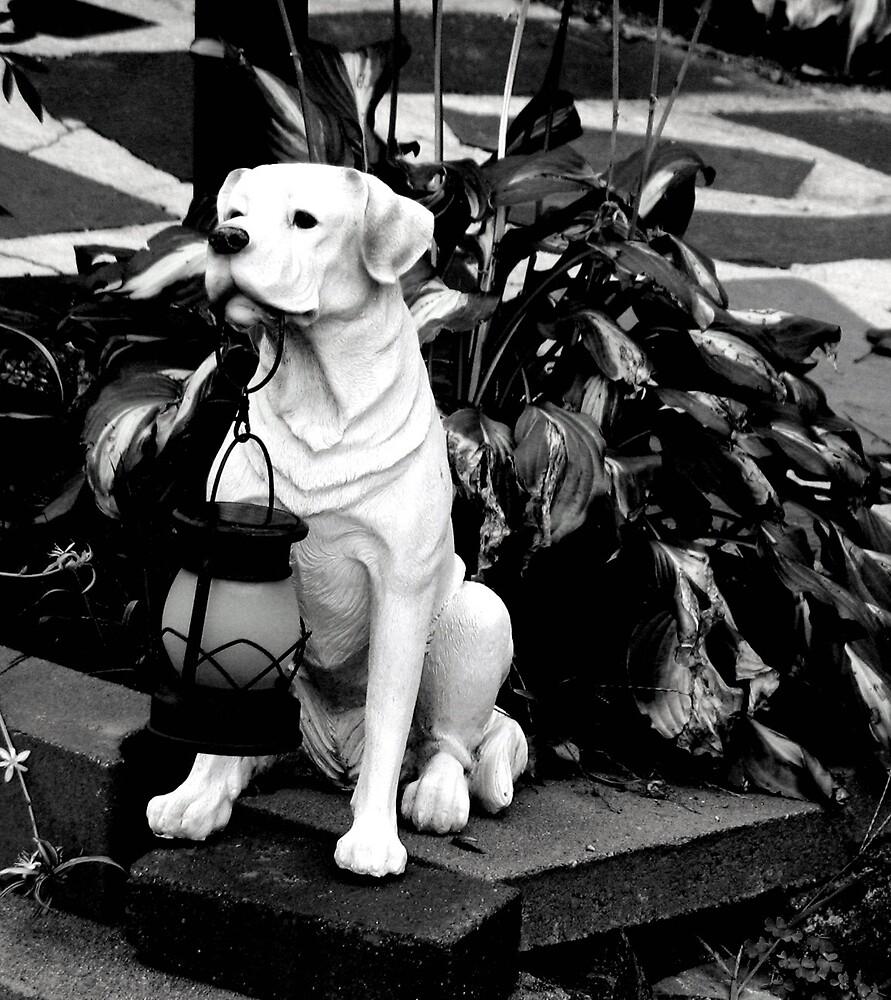 Dog Lantern by Tommy Seibold