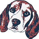 Beagle by rmcbuckeye