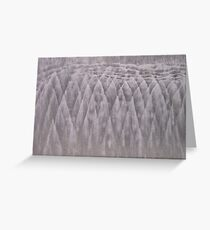Art By The Sea Greeting Card