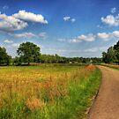 Dutch Countryside by Christiaan