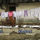 Wash 'n dry in Serbia by gluca