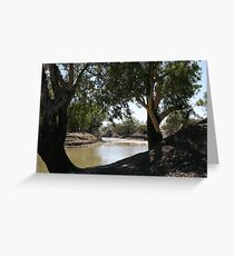 River Red Gums on The Darling River Upstream From Bourke. Greeting Card