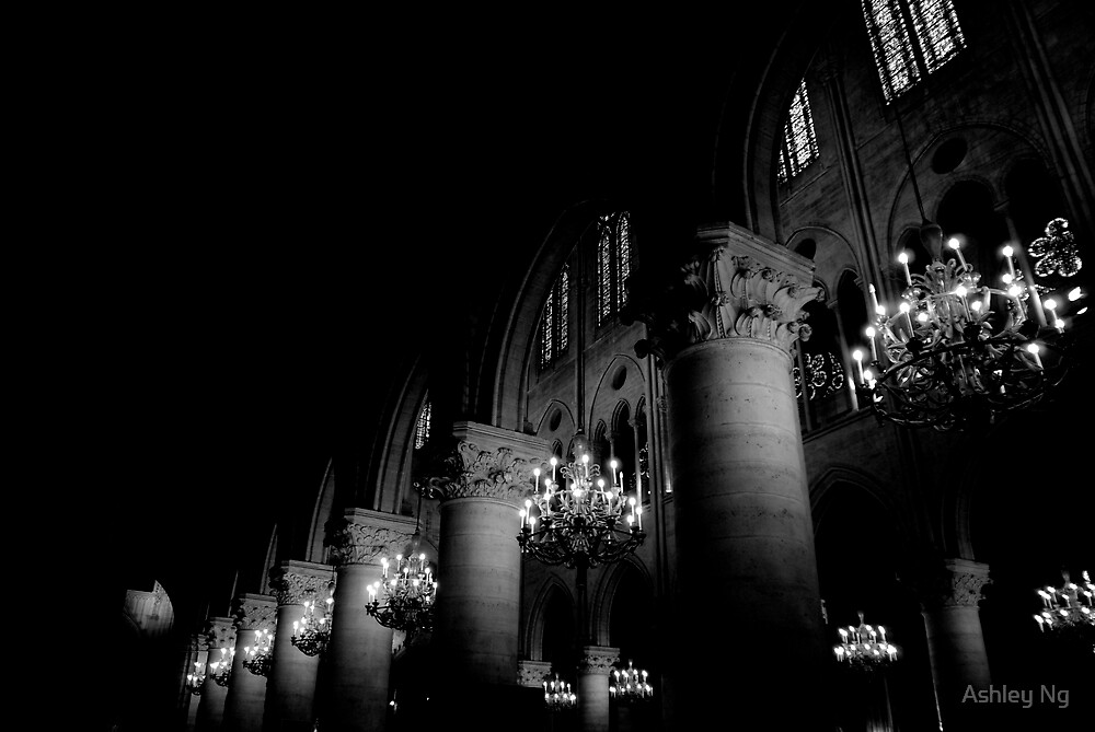 The halls of Notre Dame by Ashley Ng