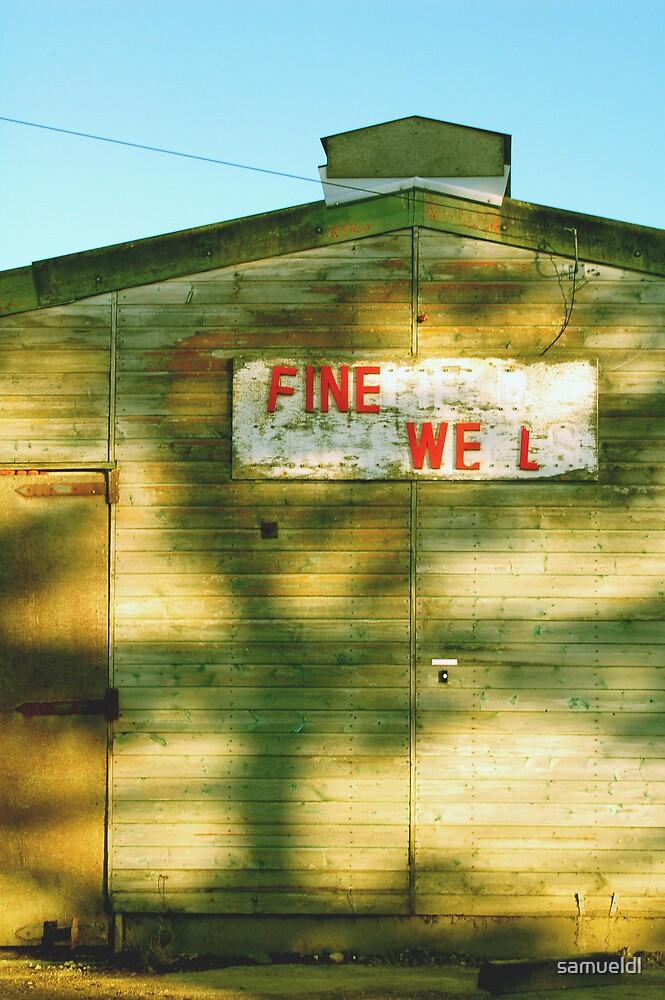 Fine Well by samueldl