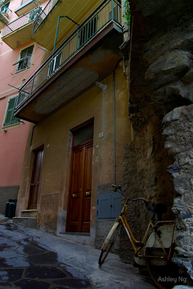 Bike in Cinque Terra by Ashley Ng