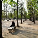 Winter and Spring by Ashley Ng