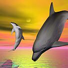 Dolphin Play by Terry Best