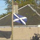 Windy Scotland by superman