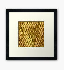 Dragon or Snake Scales - (Designs4You) Framed Print