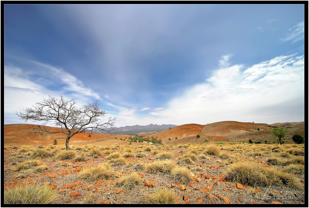 Big Skies & Red Dirt by tonilouise