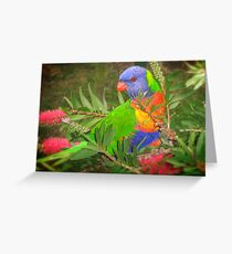 Feasting on flowers Greeting Card