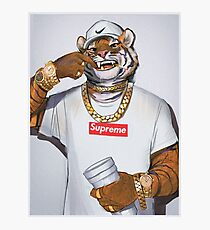 Trap Tiger Photographic Print