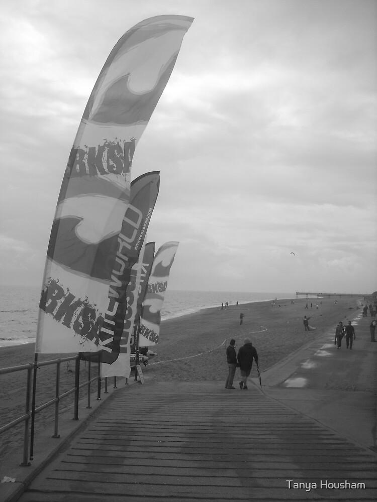 Beach kites by Tanya Housham