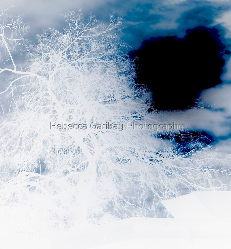 White tree by Rebecca Garibay Photography