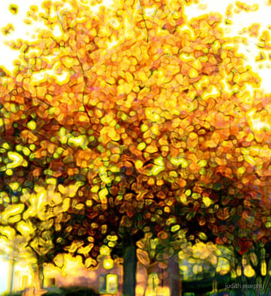 Summer tree by judith murphy