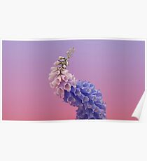 Flume flower artwork Poster