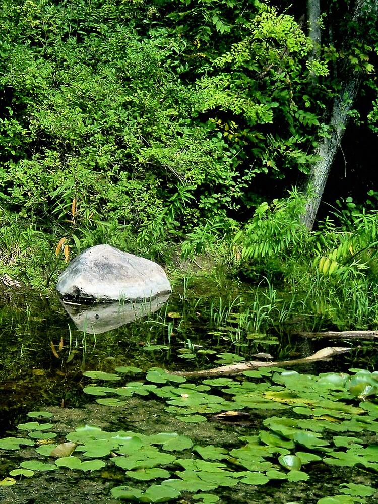 Stone by Erika Benoit