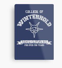 College of Winterhold Metal Print