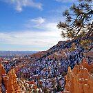 Bryce Canyon - Utah USA by Paul Gilbert