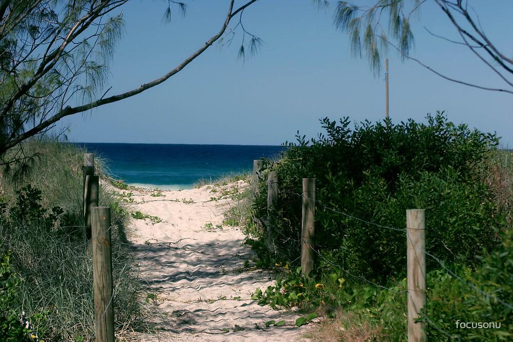 Beach path by focusonu