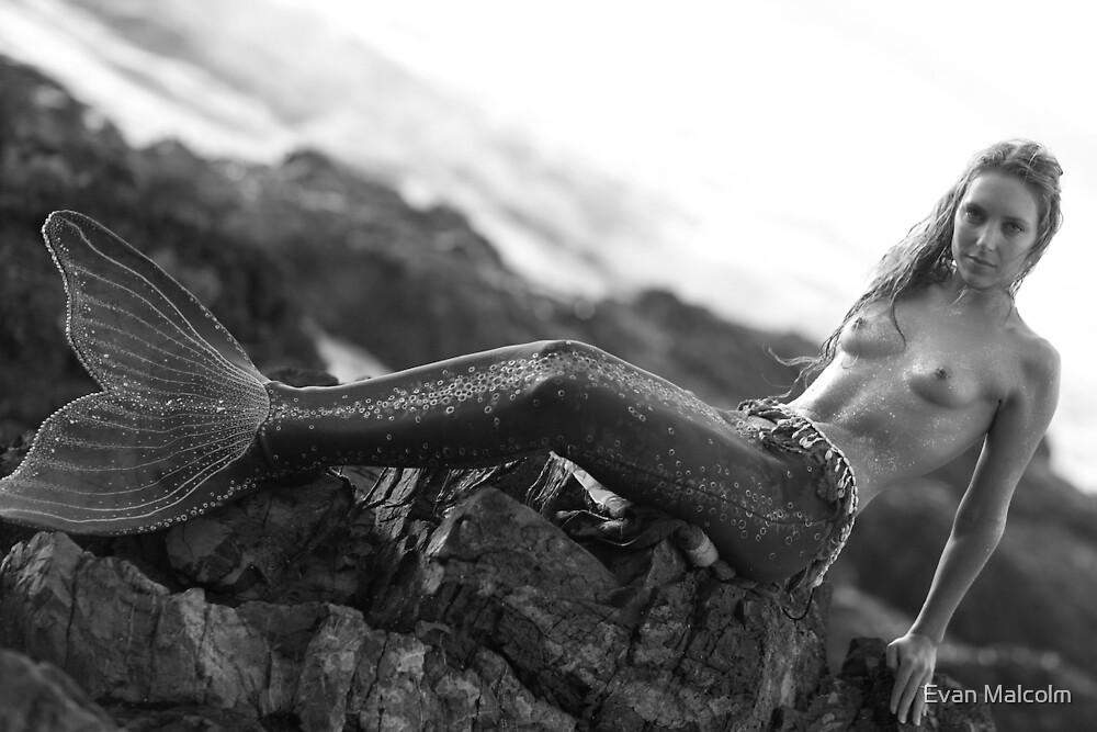 mermaid by Evan Malcolm