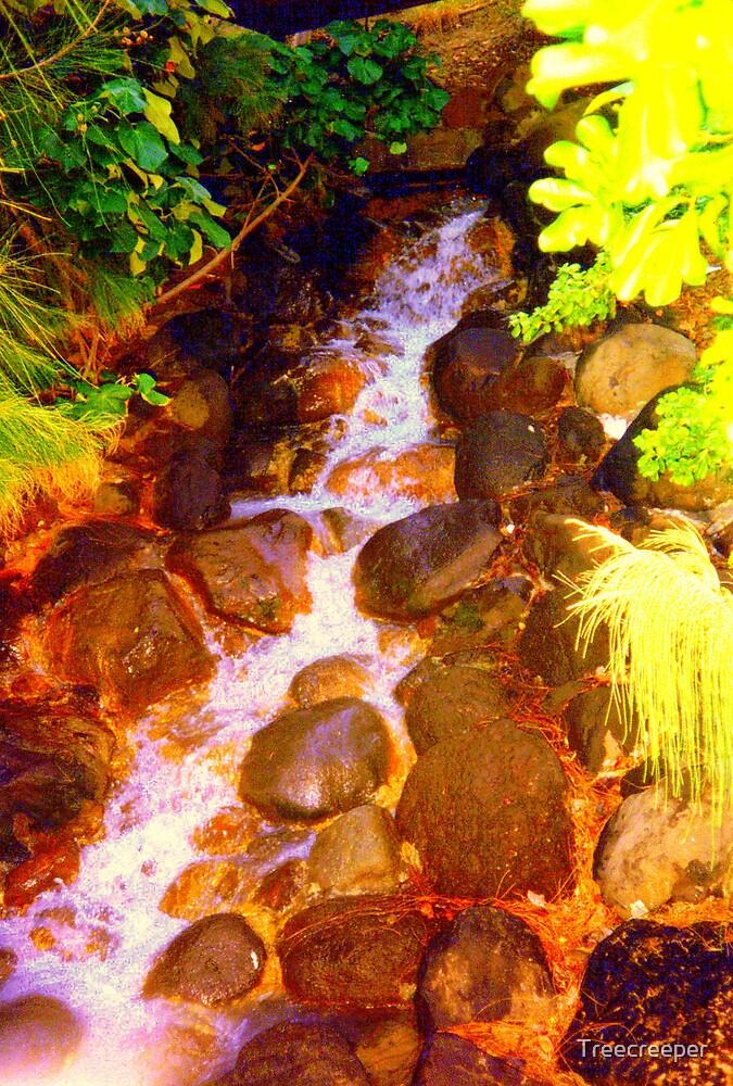 Stepping Stones by Treecreeper