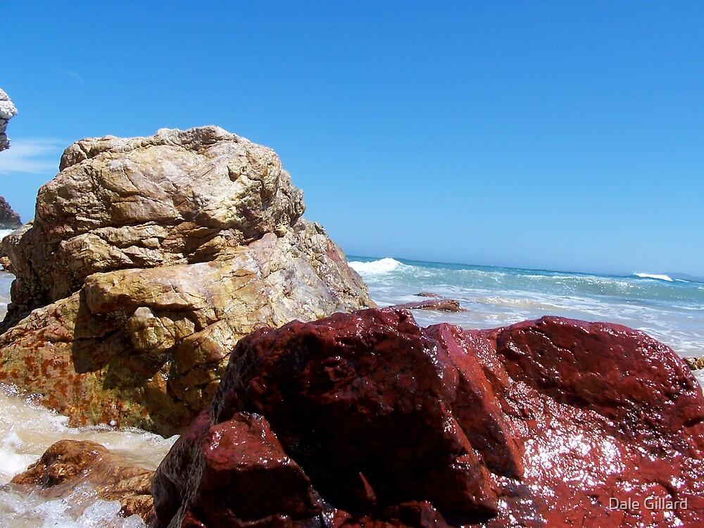 Red Rock by Dale Gillard