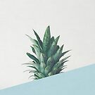 Pineapple Dip II by Cassia Beck