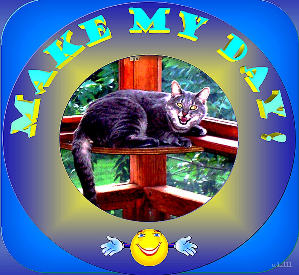Make My Day! by w1z111