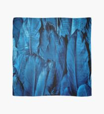 Blue Feather Close Up Scarf