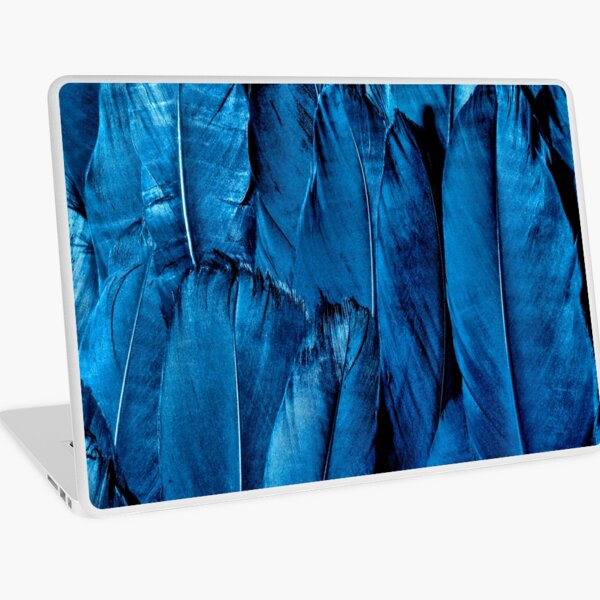 Blue Feather Close Up Laptop Skin