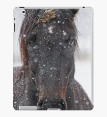 Horse in Snowstorm iPad Case/Skin