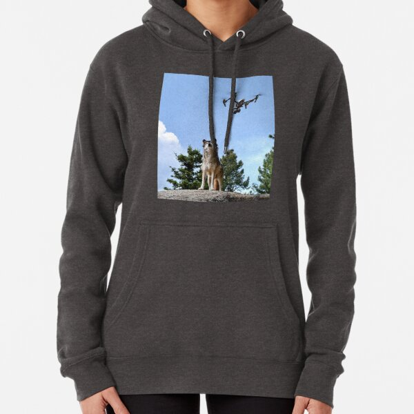 Wolf & Drone Pullover Hoodie