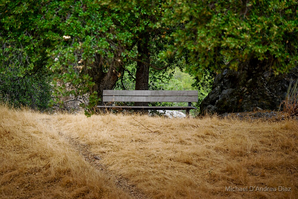 A Lonely Bench by Michael D'Andrea Diaz